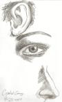 eyesearsbise