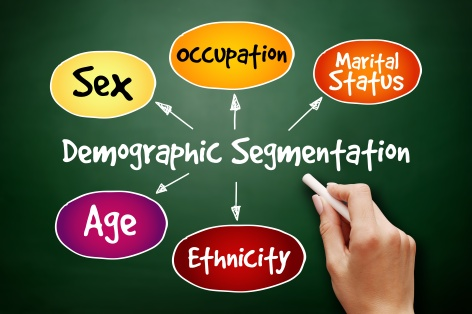 Demographic segmentation mind map flowchart social business concept for presentations and reports on blackboard