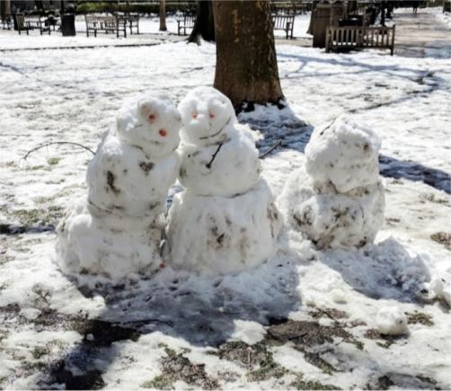 SnowFam
